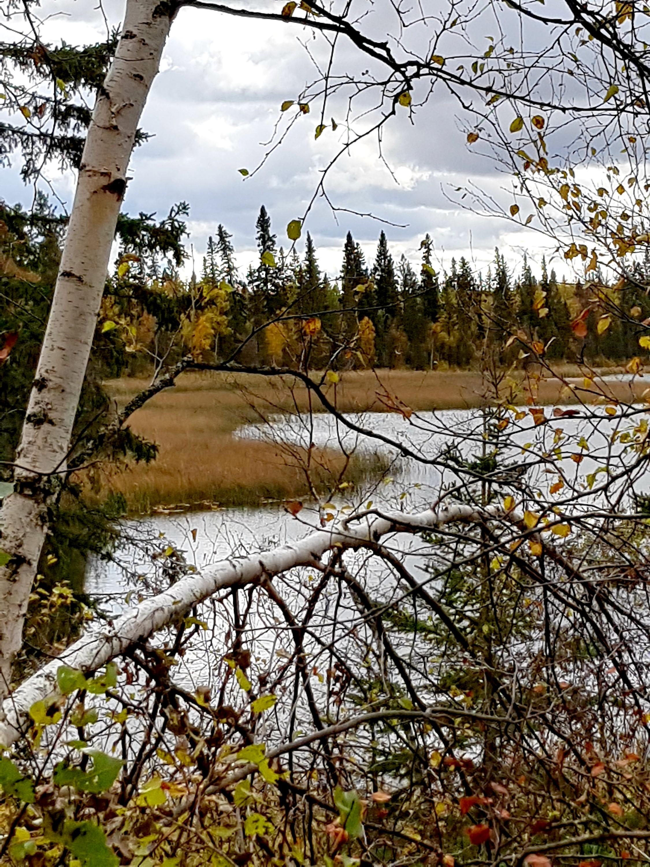 near Christopher Lake, Sk